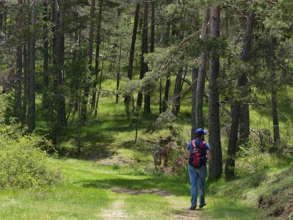 Festival Poborina en El Pobo, Teruel, para san juan, y celebrar el soslticio de verano